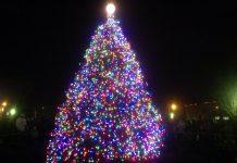 Mint Hill Tree Lighting