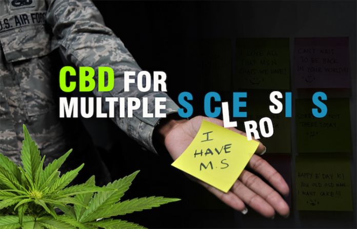 CBD Oil and MS: Can CBD Help With Multiple Sclerosis?